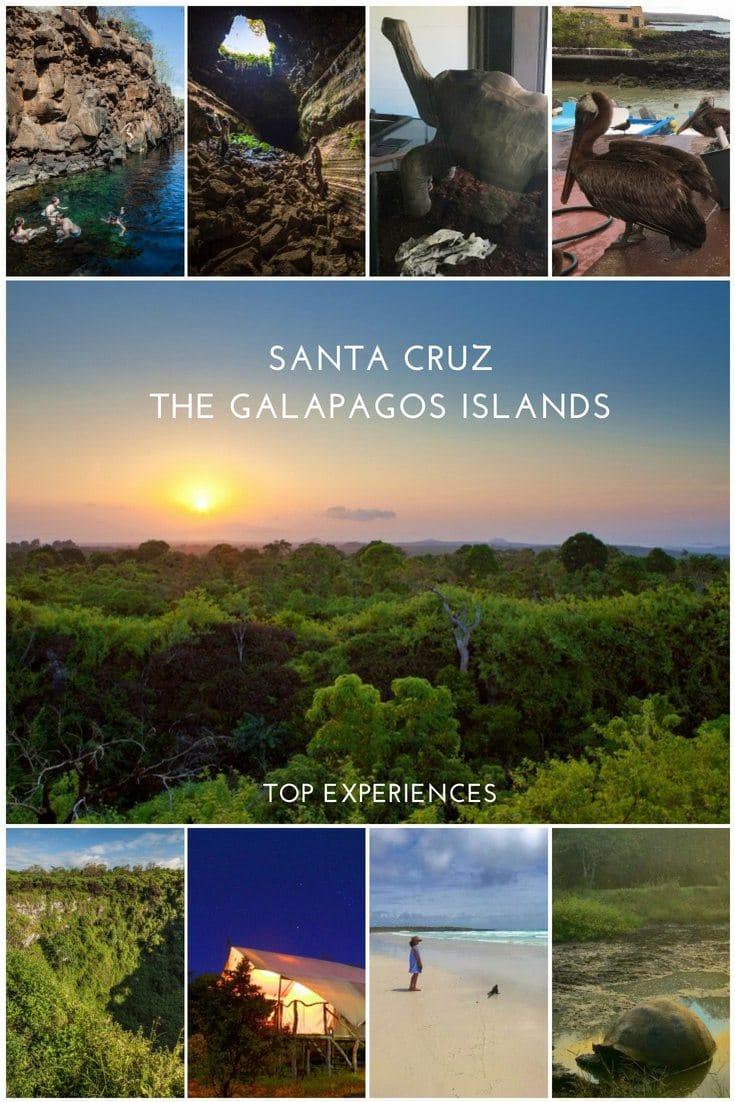 Top experiences in Santa Cruz Island, Galapagos Islands, Ecuador