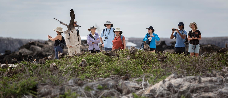 Galapagos hiking tours. Walking on North Seymour